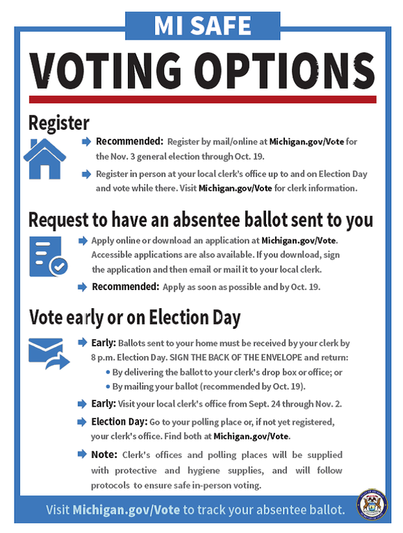 safe voting options.png