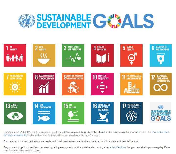 UN Sustainability agenda.PNG